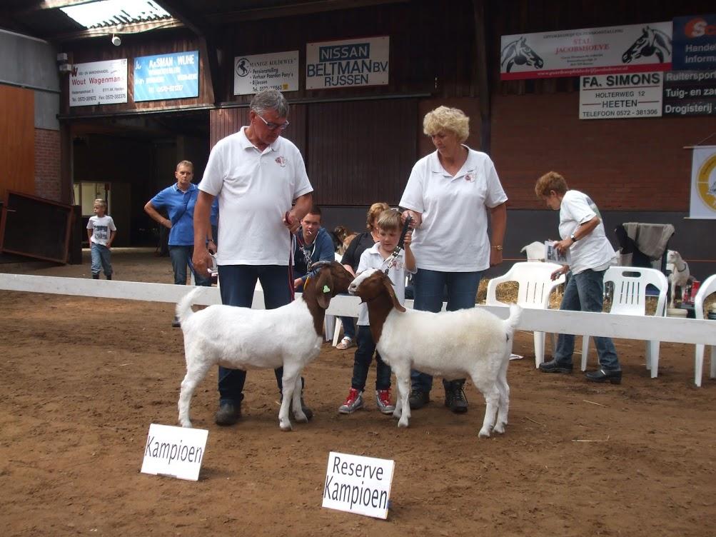 Boergeit lam kampioen Knoalster Maggie en reserve kampioen Knoalster Maartje Heeten 06 augustus 2016